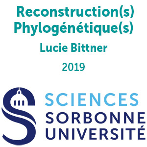 Reconstruction(s) Phylogénétique(s)